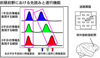 c2_32_mushiake_h1